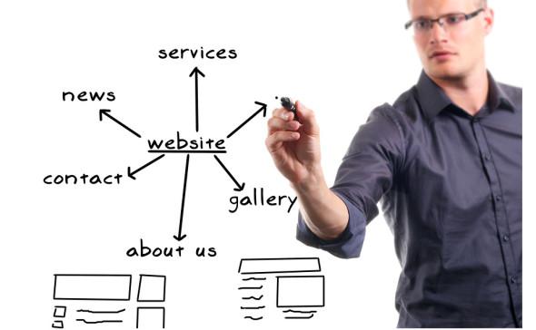 Pro web designer 590x364
